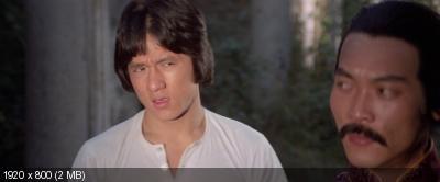 Змея в тени орла / Se ying diu sau (1978) BDRip 1080p от Freak Chaos | P, P2, A
