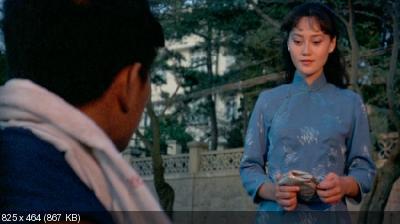 Рожденный защищать / Zhong hua ying xiong (1986) DVDRip-AVC от Freak Chaos | P