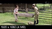 Трембита (1968)